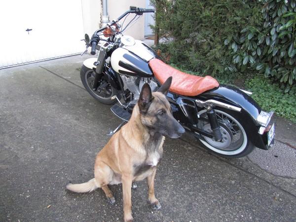 Je suis sûr d'avoir garé là ma moto !